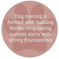 Dog Bed Training - Encouraging a Dog Settle